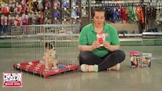 The Benefits Of Crate Training 2 - Maxi Zoo Ireland