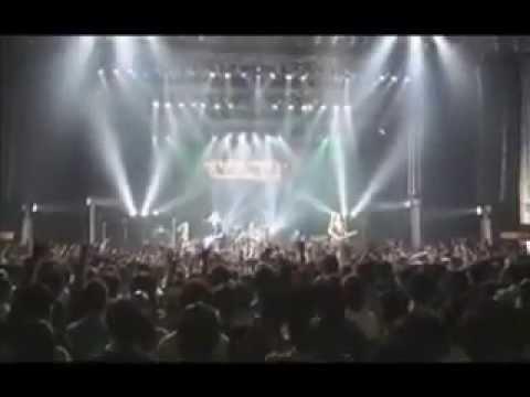 Y&T in Tokyo 2008   Black Tiger