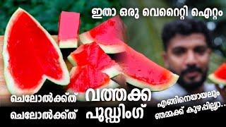 ഇത് വത്തക്ക അല്ല ! 😱😳 വത്തക്കയെ വെല്ലുന്ന പുഡ്ഡിംഗ് | watermelon Special Pudding