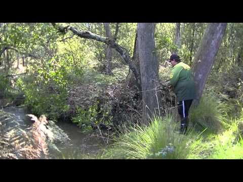 Nymphing The Small Trout Streams