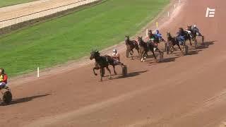 Vidéo de la course PMU PRIX DE BORDEAUX