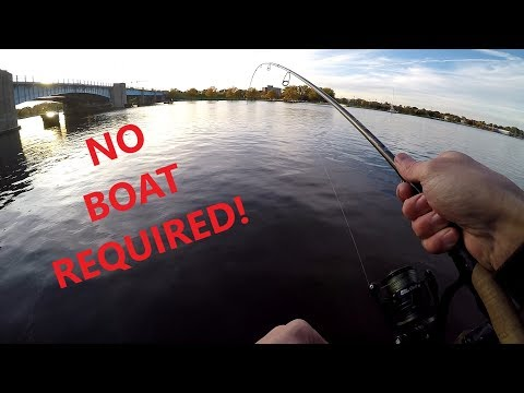 Saginaw River Walleye Fishing From Shore