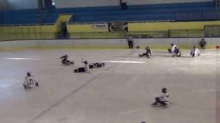 HC Sparta Praha sledge hokej vs Studenka
