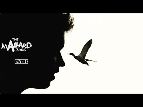 The Mallard Song 🦆