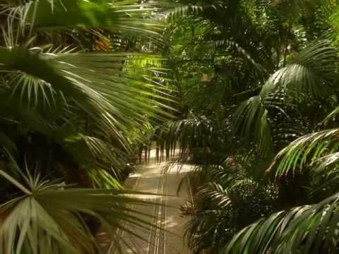 National Botanic Gardens,Glasnevin,Dublin.
