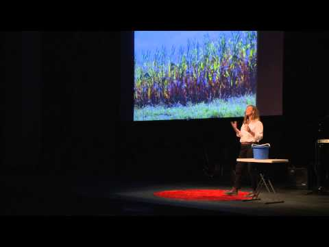 Stop treating our soil like dirt! | Karen Wynne | TEDxHuntsville