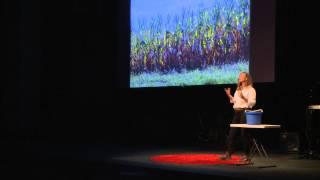 Stop treating our soil like dirt! | Karen Wynne | TEDxHuntsville
