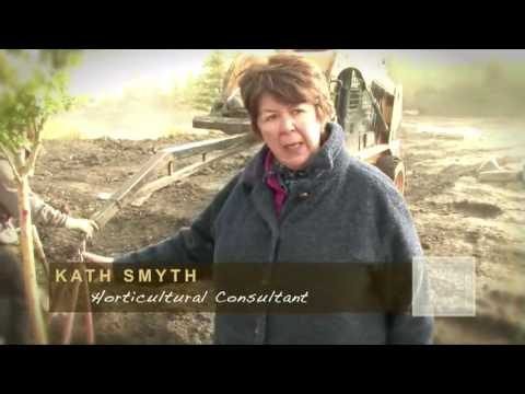 How to plant a tree - Countryside Landscapes & Garden Center - Calgary Online Video Production