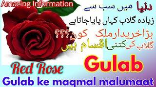 Faheem K v...