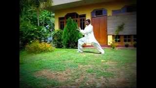Chen Style Tai Chi Lao Jia (Old Frame) 39 Form