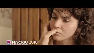 La Sección Oficial de Cortos del FESCIGU 2018 (IV)