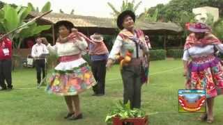 TAYACAJINO DE ORO 2015 - HERVAY SANTA