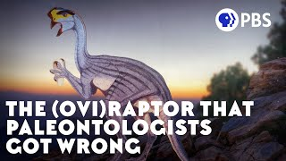 the-case-of-the-dinosaur-egg-thief