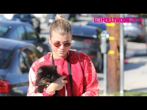 Sofia Richie Speaks On Cameron Dallas, Anwar Hadid & Nicola Peltz Dating Rumors 1.26.17
