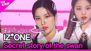 IZ*ONE, Secret story of the sw…