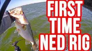 First Time Fishing a Ned Rig ~Bass Love this Bait!!!