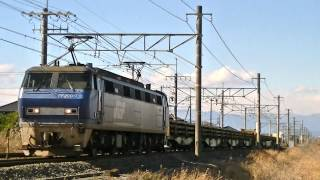 EF200-7号機 8090レ貨物列車 片浜-沼津間