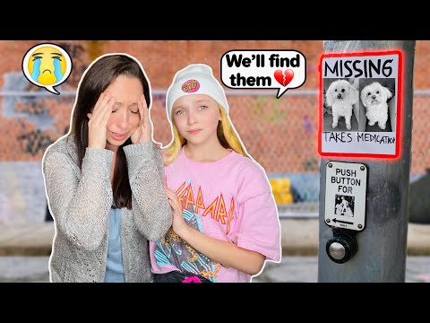 I LOST BOTH OUR DOGS!! **MY MOM CRIED!** #LillyK #lostdogs