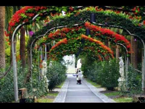 Fotos de islas canarias tenerife santa cruz de - Parques infantiles en santa cruz de tenerife ...