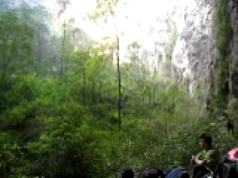 biggest forest forest in the cave 1 biggest cave of the world youtube