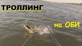 Астраханская Рыбалка на ... - w-fish.ru