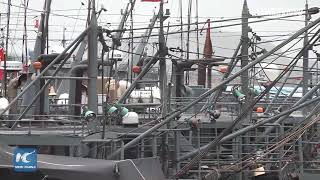 LIVE: Typhoon Bailu lands in coastal town of Fujian, China