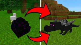 [MCPE] COMMENT FAIRE ÉCLORE L'ŒUF DE L'ENDER DRAGON SUR MINECRAFT PE [HD-FR]