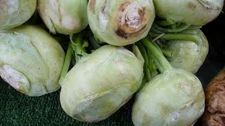 Kohlrabi: How To Choose And Use This Vegetable From Plants-rule