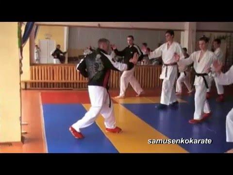 Seminar karate -