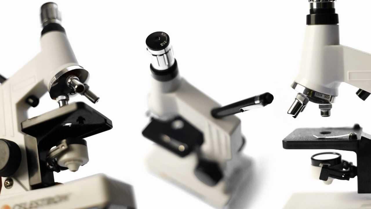 Электронный микроскоп 500x с Aliexpress - YouTube