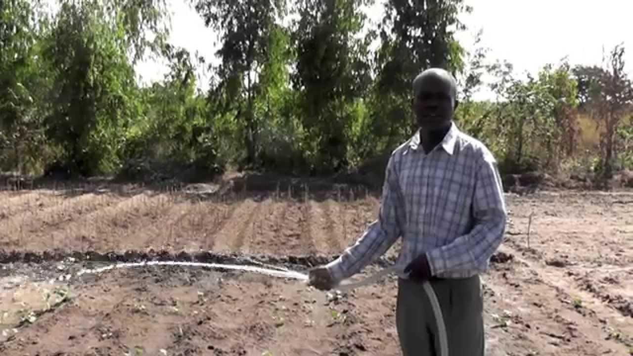 Installazione Pompa Ad Acqua Solare Per Irrigazione Agricola In