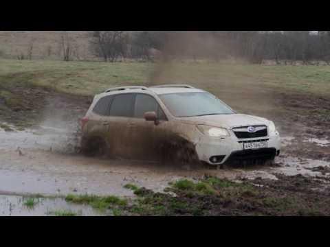Subaru Forester 2016 на тест-драйве Drom.ru