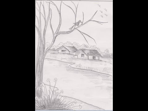 how-to-draw-a-crow-on-a-tree-branch-!!-sketch-drawing-!!-village-senery-with-pencil-!!-tutorial