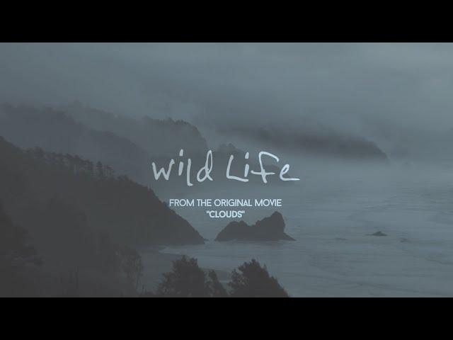 OneRepublic - Wild Life (Lyric Video)