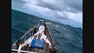 Mancing Kepepet, pulau damar, marlin indonesia