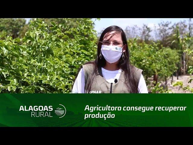 Agricultora consegue recuperar produção atingida por pragas e doenças