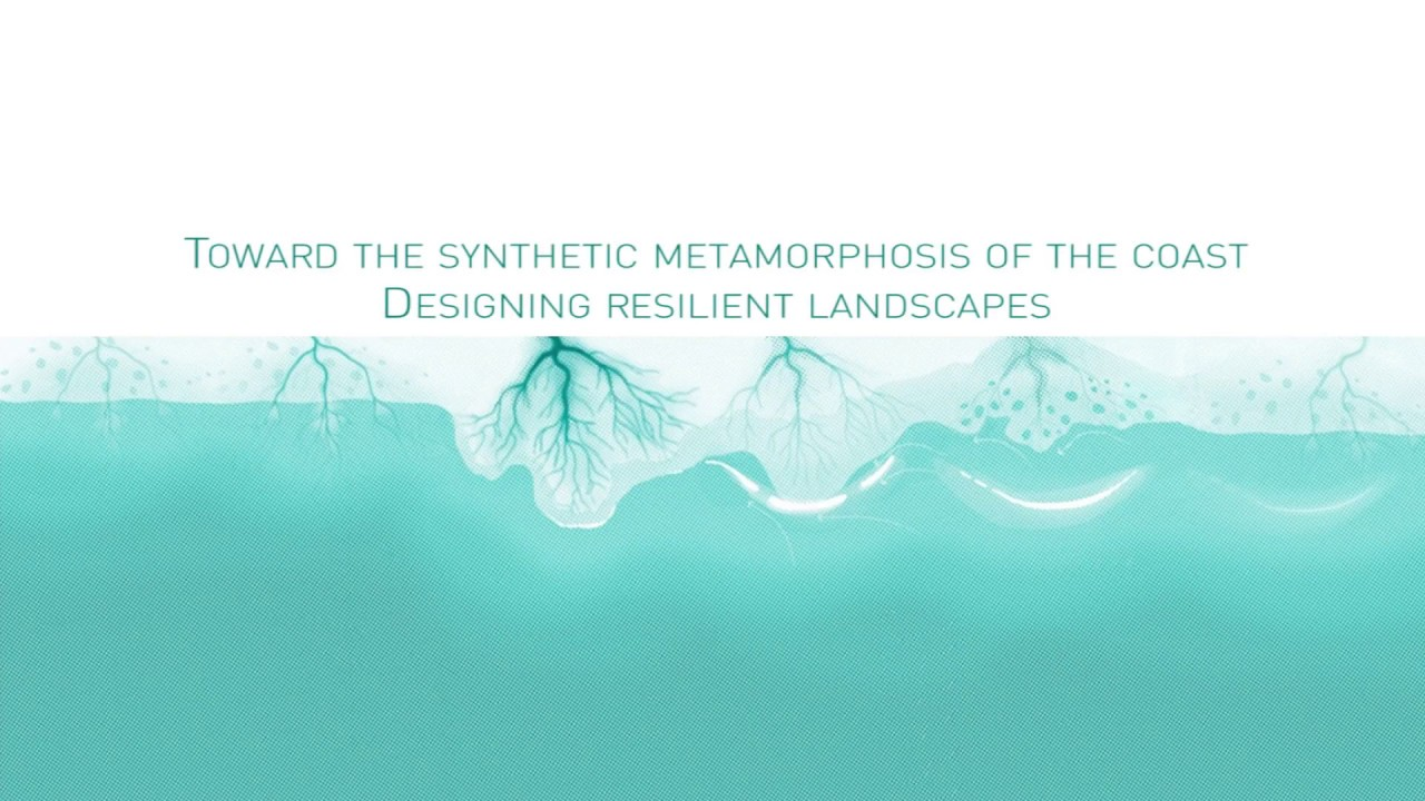 TOWARD THE SYNTHETIC METAMORPHOSIS OF THE COAST  DESIGNING RESILIENT LANDSCAPES