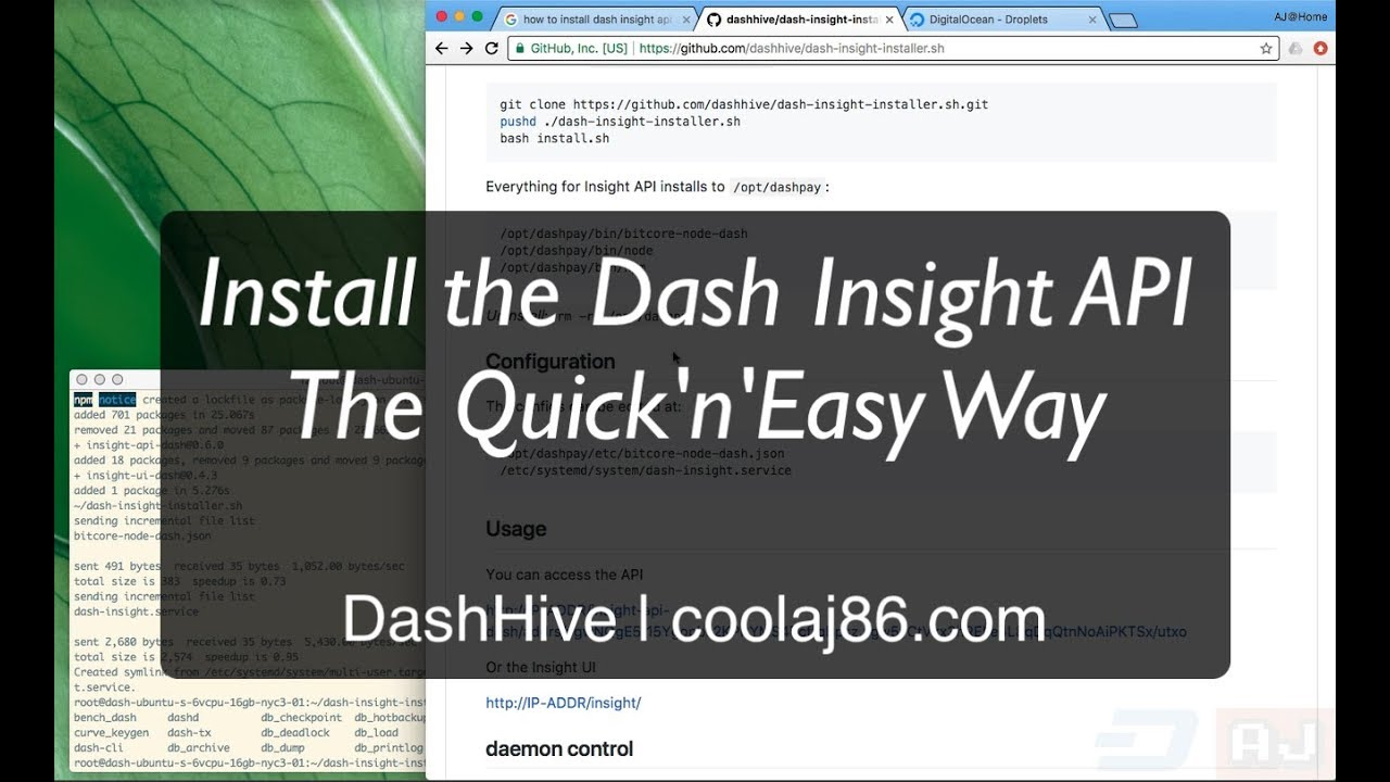 How to Install the Dash Insight API the Quick and Easy Way - Dash