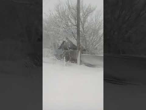 Зима вернулась: в Костанайской области выпал апрельский снег
