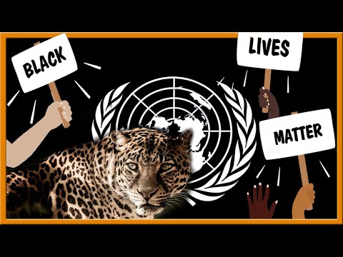 Black Lives Matter, the UN, and the Leopard in Bible Prophecy