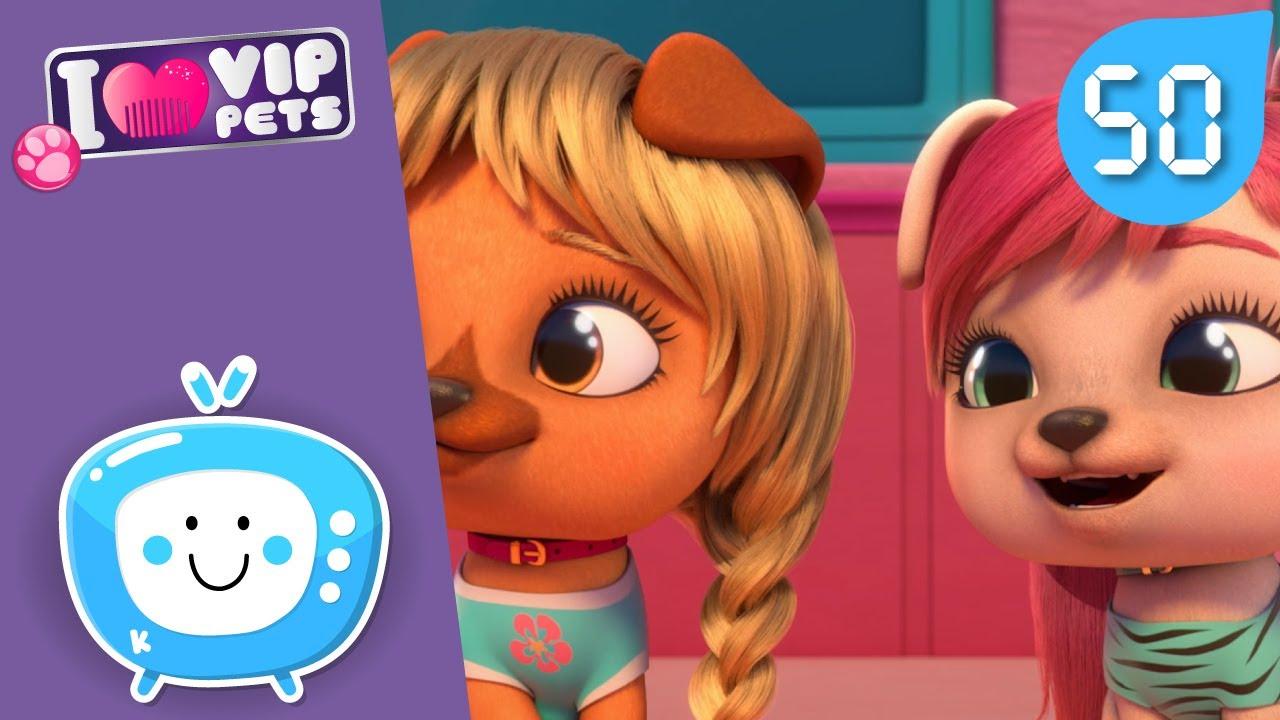 🌟 ახალი თმის ვარცხნილობები 🌟 VIP PETS 🌈 სრული ეპიზოდები 💇🏼 ვიაპი ფეთს 🌈 მულტფილმები ქართულად
