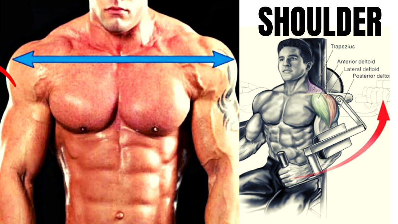 5 BEST SHOULDER WORKOUT /  programme musculation épaules