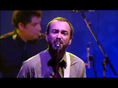 The Shins - Kissing The Lipless Live