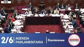 Sesión Comisión de Constitución 2/6 (20/05/19)