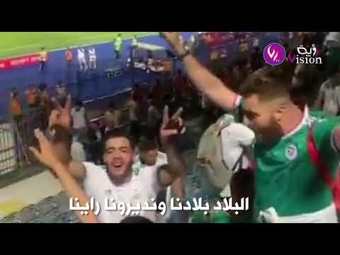 شاهد.. كيف تفاعل الجزائريون والعرب مع فيديو الأنصار ينظفون ملعب القاهرة بعد المباراة
