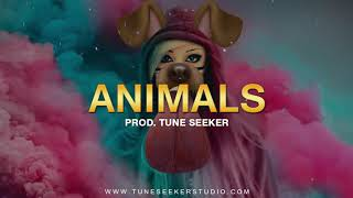 Disco Dance Beat Pop Instrumental - Animals (prod. by Tune Seeker)