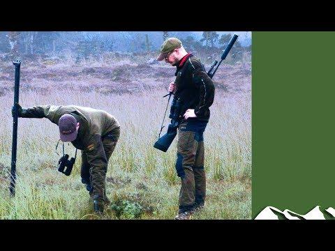 Tracking An Injured Sika In Ireland