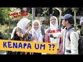 ALASAN MABA 2019 PILIH KAMPUS UM ( Universitas Negeri Malang / Universitas Mahasantuy )