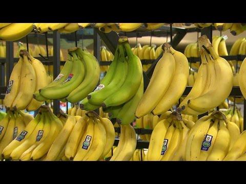 Mo Rocca goes bananas