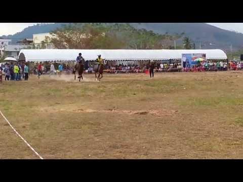 แข่งม้ารอบชิงชนะเลิศม้าใหญ่ชิงที่ 1 ม้า 2 ตัว ณ สนามตลาดเมืองใหม่ ปาดังเบซาร์